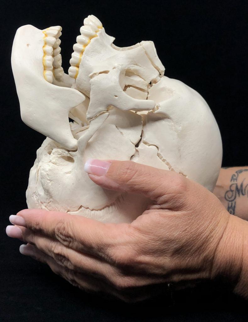 crane craniosacral